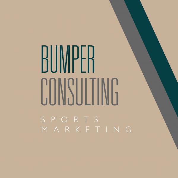 Bumper Consulting Brand Identity